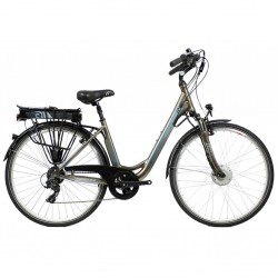 Raleigh Forge Low Step TransX System Electric Bike